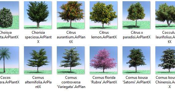 Species of plants